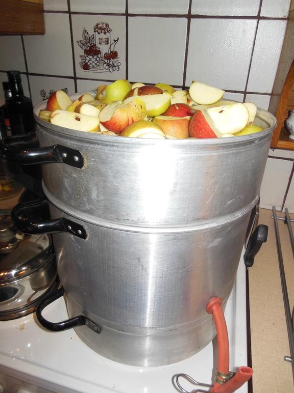 Årets første eplesaftlaging